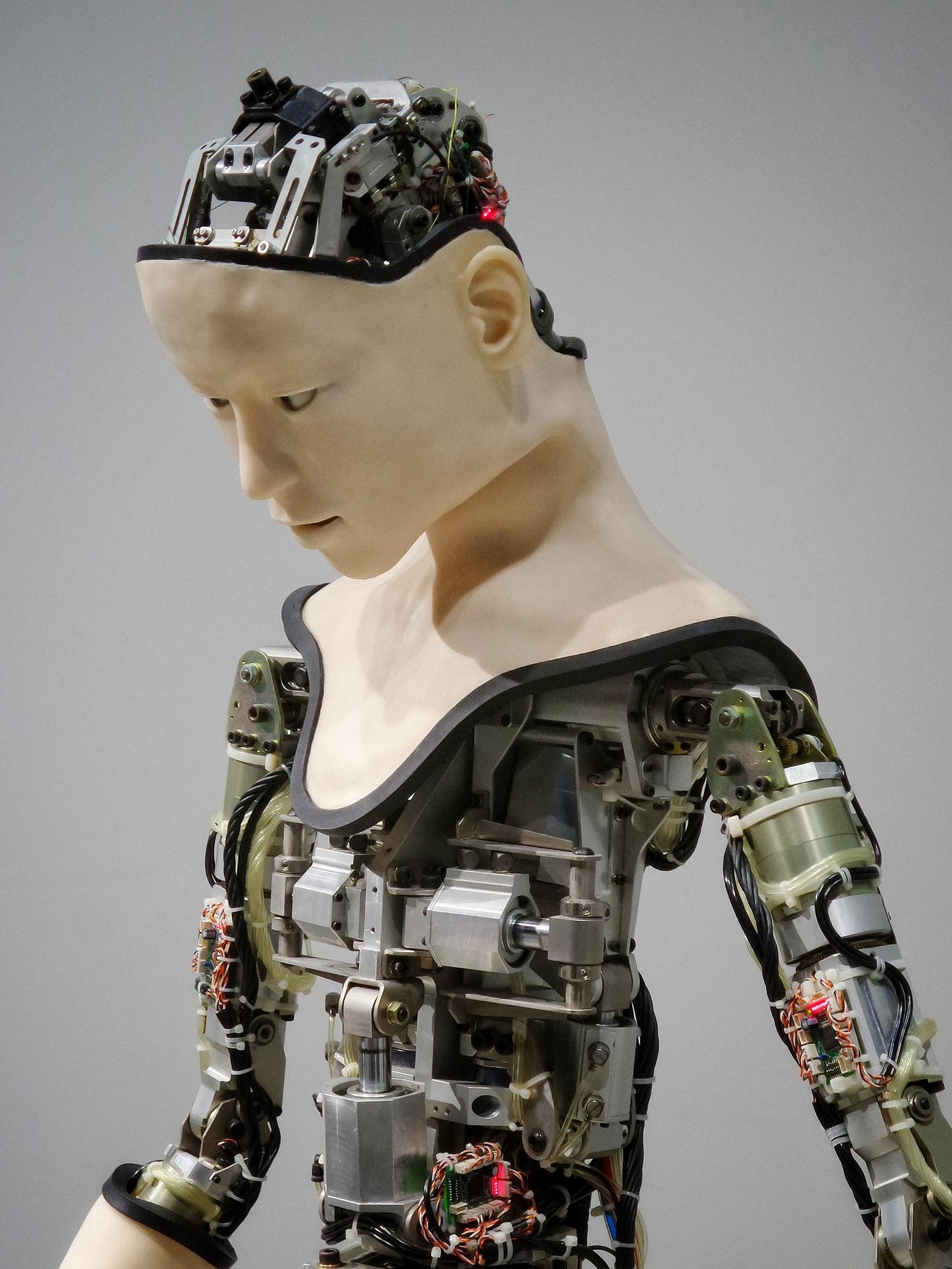 ces 2020,cs show,robot