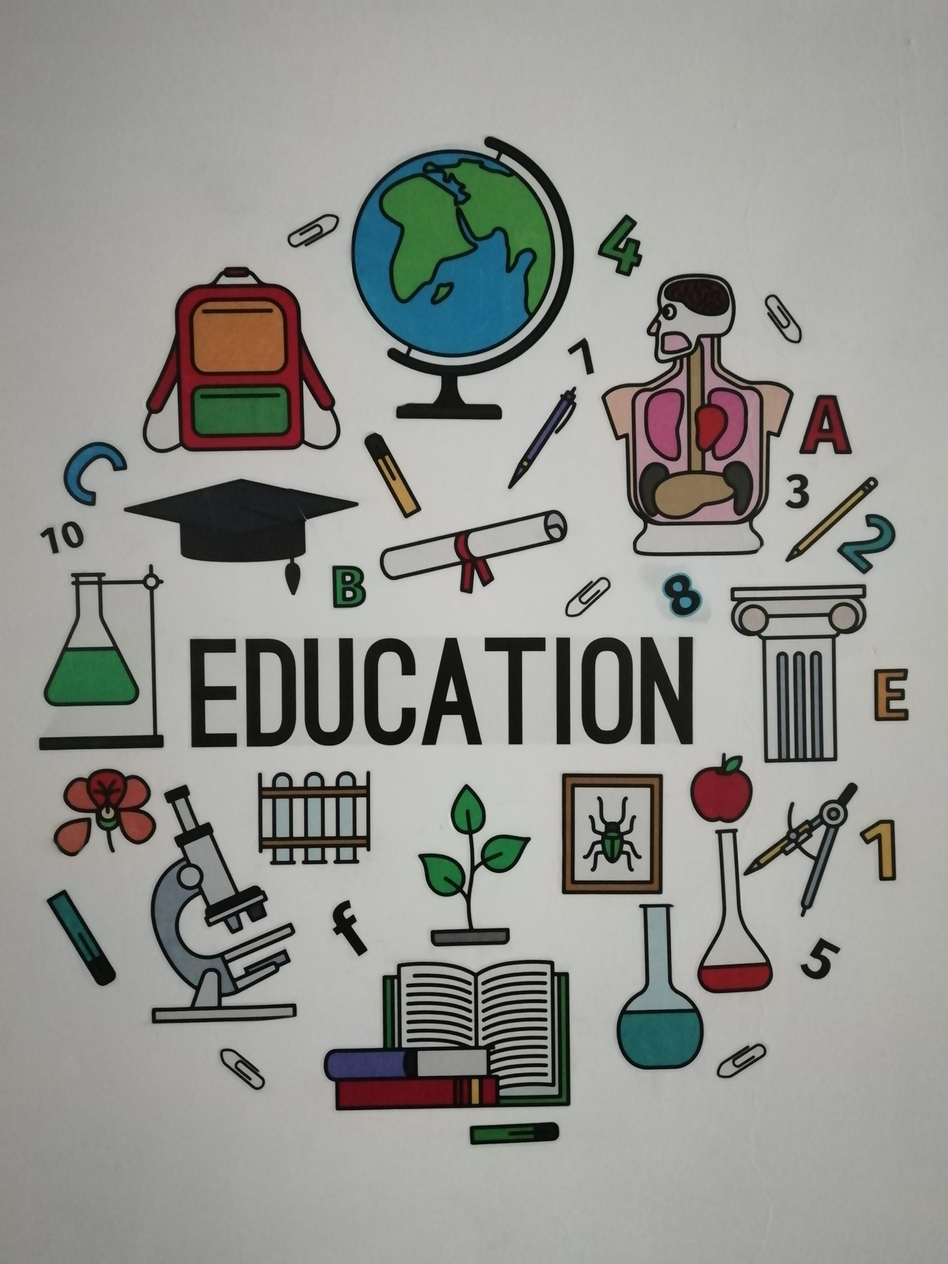 Education divided into four parts