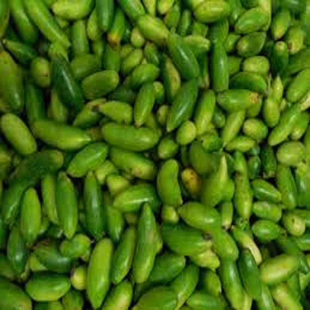 Kundru vegetable