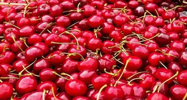 cherries, suger, Diabetes