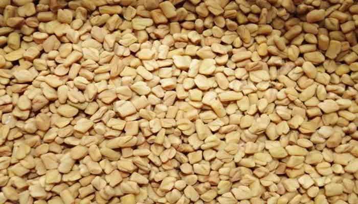 Fenugreek seeds, Fenugreek